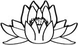 Zur Lotus Shop